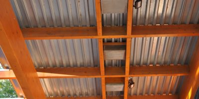 Queen-Elizabeth-Pool ceiling